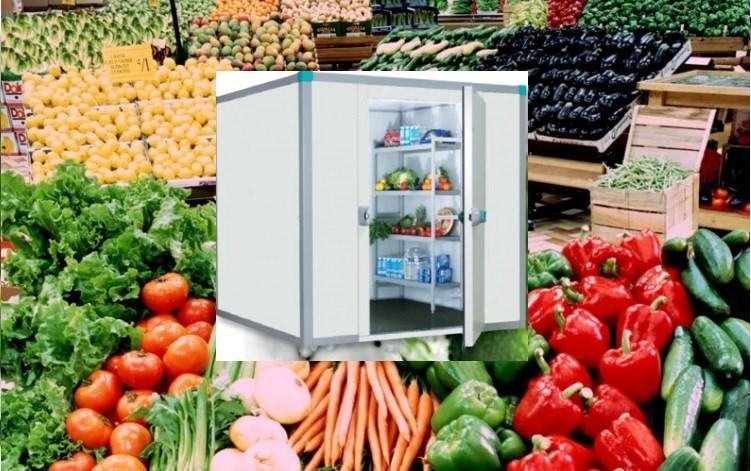 Rau củ trái cây màu xanh trữ bảo quản kho lạnh mini giá rẻ có công dụng bất ngờ