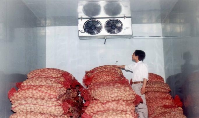 Kho lạnh trữ nông sản - nông phẩm giá rẻ